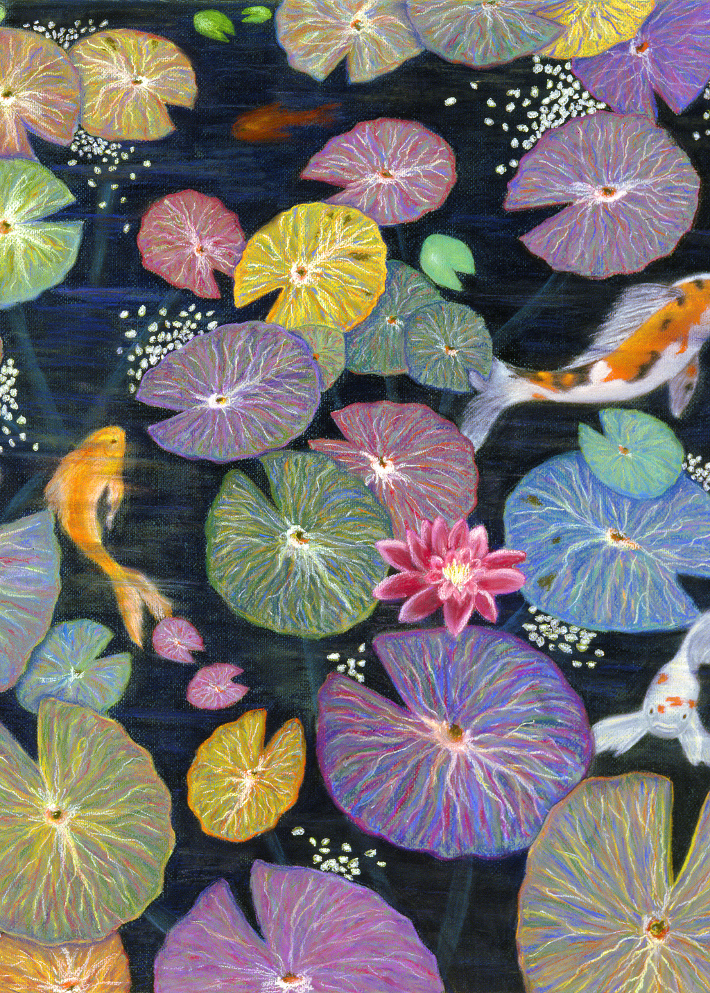 Picture of Water Lilies and Koi