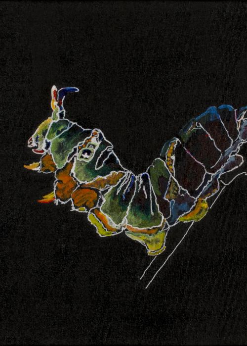 Picture of Caterpillar