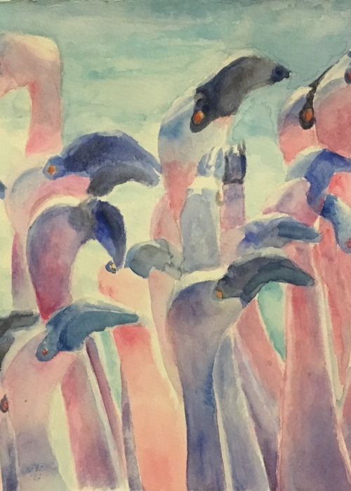 Picture of Flamingoes