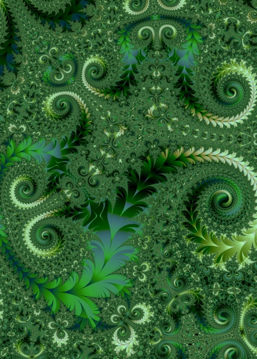 Picture of Green Fractal Ferns