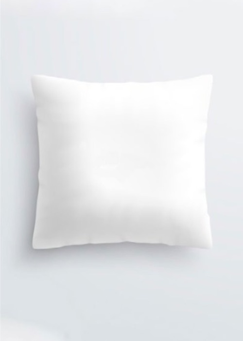 Picture of Untitled No. 50 b Pablo Pillow